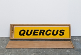 quercus-2-part-of-the-named-trees-of-london-stove-enamel-on-brass-2007